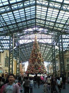 ランドのクリスマスツリー