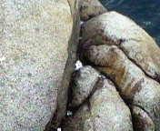 トレビの岩?