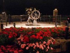 ケープコッドのミッキー像前の花壇が、カーネーション一色に
