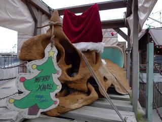 トリケラトプスのクリスマス飾り