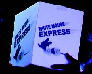 WHITE MOUSE EXPRESS
