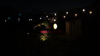 夜のティンカーベルズ・ガーデン