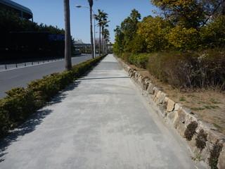 運動公園横の歩道