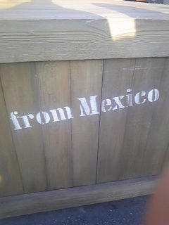 from MEXICO;