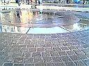 びしょ濡れの地面